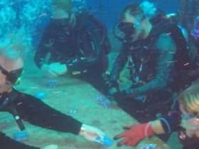 蜗牛扑克:第二届水下扑克锦标赛将于今年夏举办
