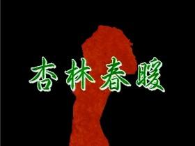 【蜗牛扑克】[杏林春暖.完整版][540P][DVD-MKV/1.78G][国语中繁][稀缺台猫情欲三级]