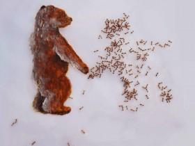 【蜗牛扑克】艺术家用蚂蚁作画 艺术作品令人头皮发麻