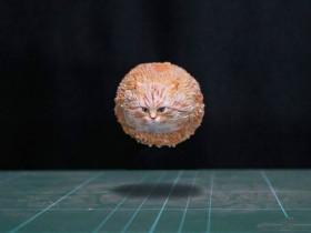 【蜗牛扑克】令人捧腹大笑的精美手办 还原了浮空流浪猫等造型