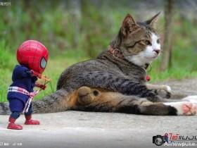 【蜗牛扑克】泰国网友分享蜘蛛侠模型写真 蜘蛛人迷你生活照太帅了