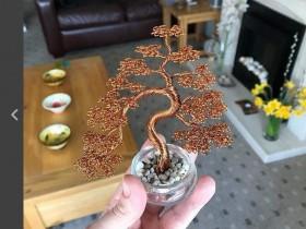 【蜗牛扑克】瓶中铁丝树 艺术家巧手创意令人不可思议