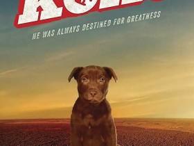 【蜗牛扑克】[Koko:红犬历险记][HD-MP4/1.4G][英语中字][1080P][狗狗爱好者必看的纪录片]