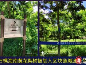 """【蜗牛扑克】""""国内首家STO""""!花梨通证(HHLC)上线币夫交易平台"""