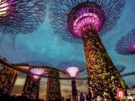 【蜗牛扑克】新加坡中央银行更新了ICO指南