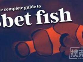 【蜗牛扑克】如何用正确的3bet范围对抗鱼玩家