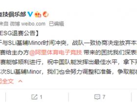 【蜗牛电竞】因与Minor赛程冲突,VG宣布退出WESG全球总决赛