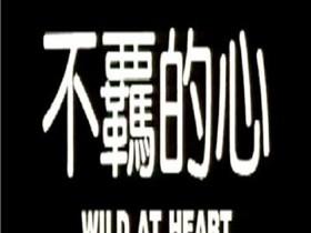 【蜗牛扑克】[不羁的心][720P][DVD-MKV/1.36G][国语/中英双字][香港情欲三级]