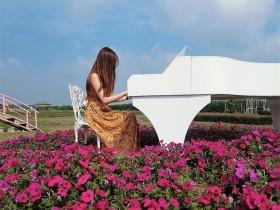 【蜗牛扑克】小清新正妹Estelle 新社花海花海中弹钢琴仙气逼人