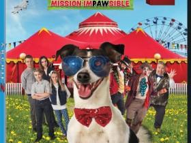【蜗牛扑克】[我的超级智能狗2][DVD-MP4/1.3G][英语中字][加拿大喜剧智能狗狗拯救家庭]