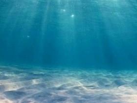 【蜗牛扑克】在海底世界避暑