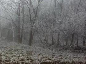 【蜗牛扑克】云南的雪