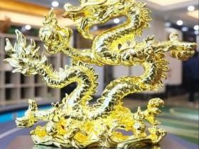 【蜗牛扑克】2021CPG济南站|PlusEV-COP战队获得团队赛冠军