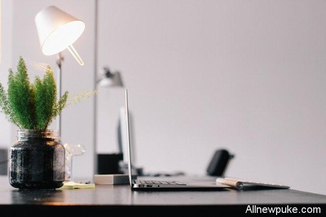 【蜗牛扑克]】办公室植物风水摆设的讲究
