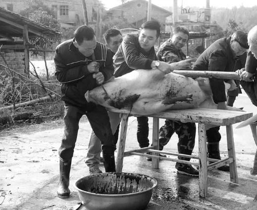 【蜗牛扑克】杀猪为过年