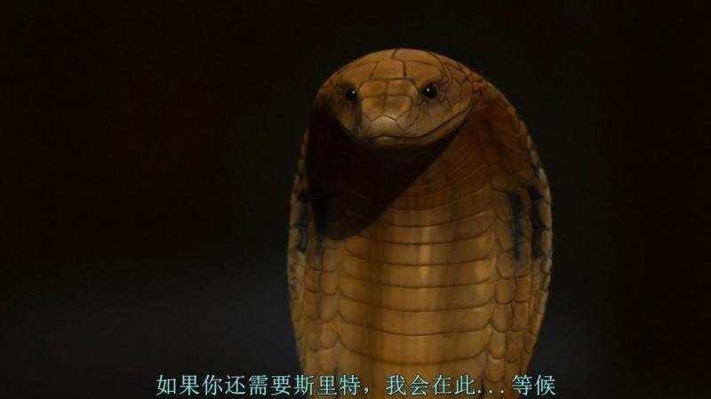 【蜗牛扑克】[护宝狗狗][BD-MKV/2GB][1080P][英语中字][迪士尼家庭出品喜剧  古埃及惊险夺宝之旅]