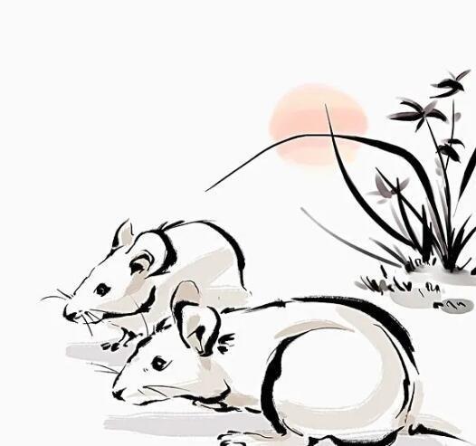 【蜗牛扑克】被老鼠咬